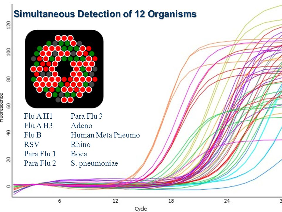 Simultaneous Detection of 12 Organisms