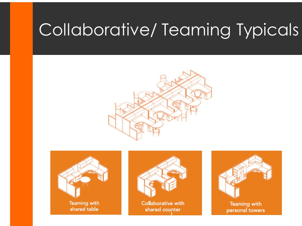 Collaborative/ Teaming Typicals
