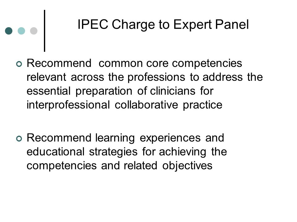IPEC Charge to Expert Panel