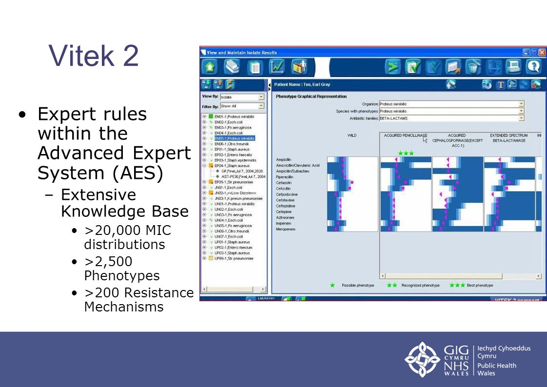 Vitek 2 Expert rules within the Advanced Expert System (AES)