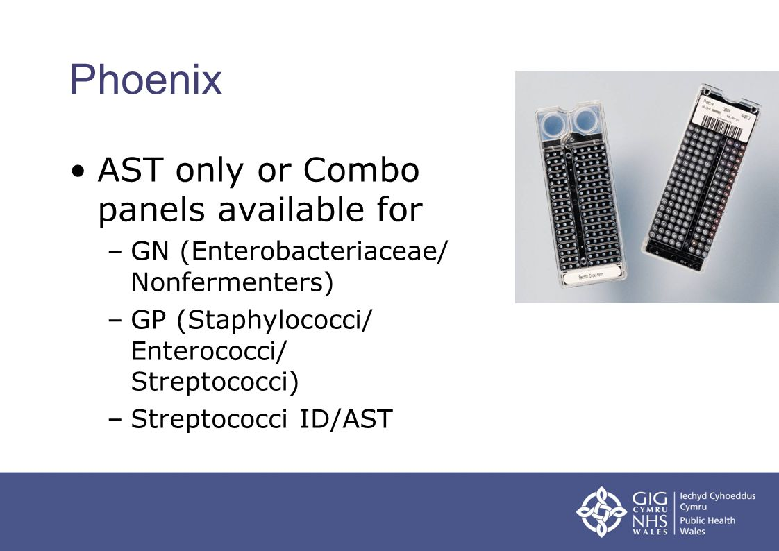 Phoenix AST only or Combo panels available for