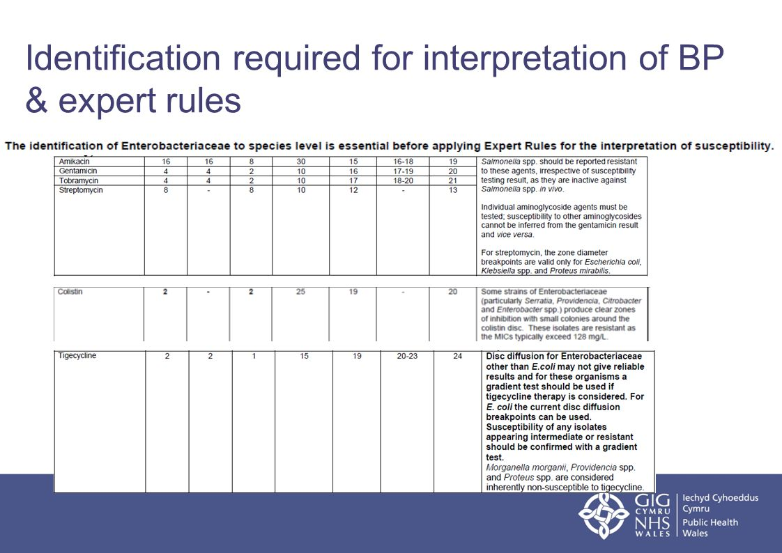 Identification required for interpretation of BP & expert rules