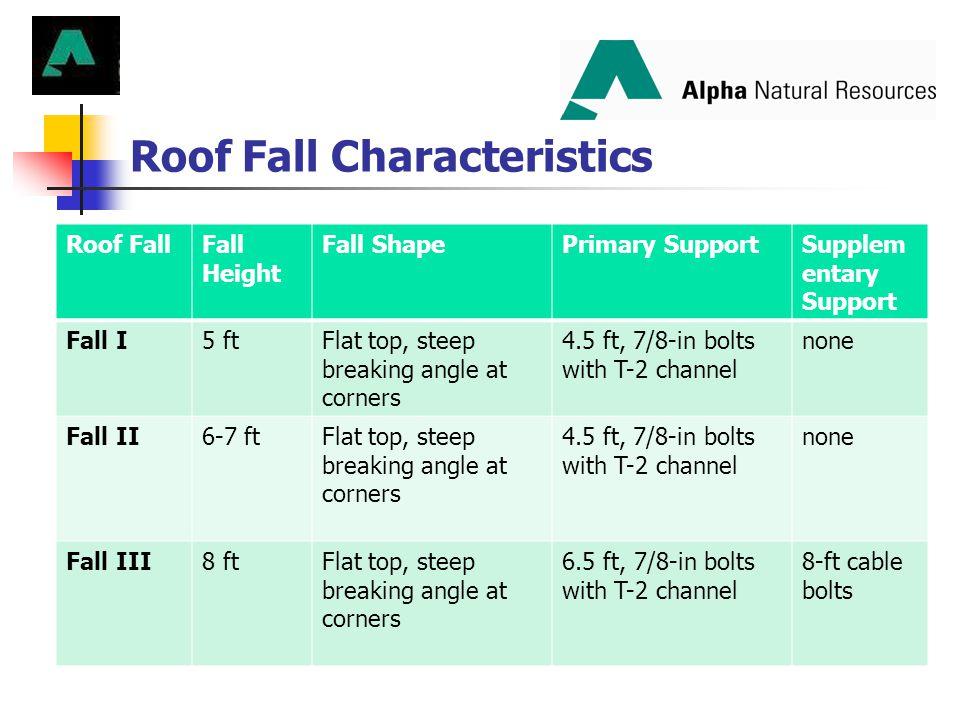 Roof Fall Characteristics