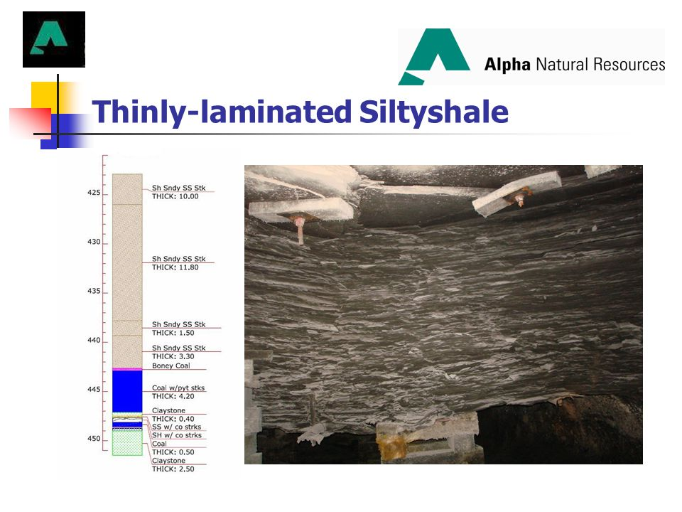 Thinly-laminated Siltyshale