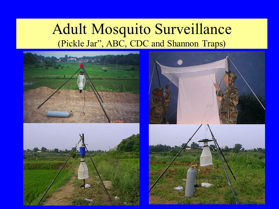Adult Mosquito Surveillance (Pickle Jar , ABC, CDC and Shannon Traps)