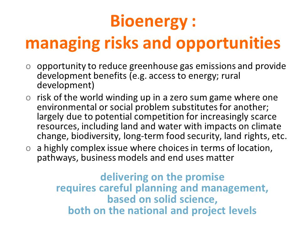 Bioenergy : managing risks and opportunities