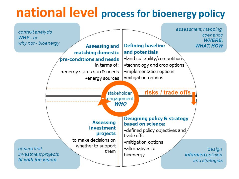 national level process for bioenergy policy