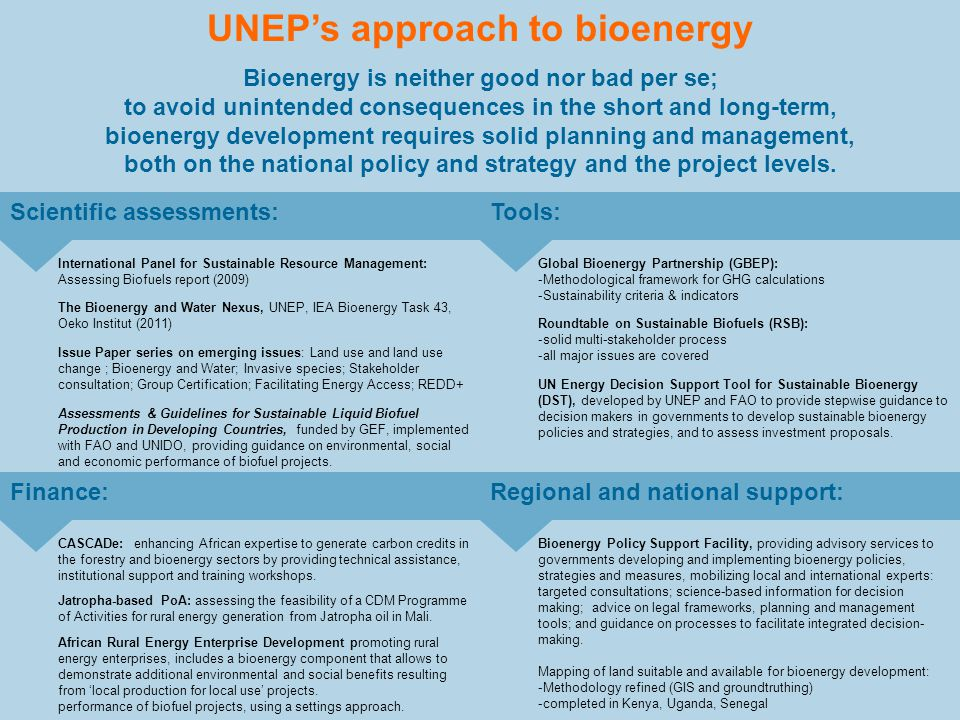 UNEP's approach to bioenergy