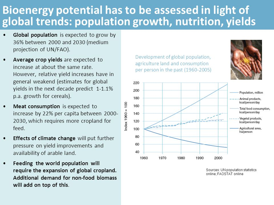 Bioenergy potential has to be assessed in light of global trends: population growth, nutrition, yields