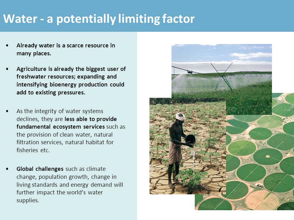 Water - a potentially limiting factor