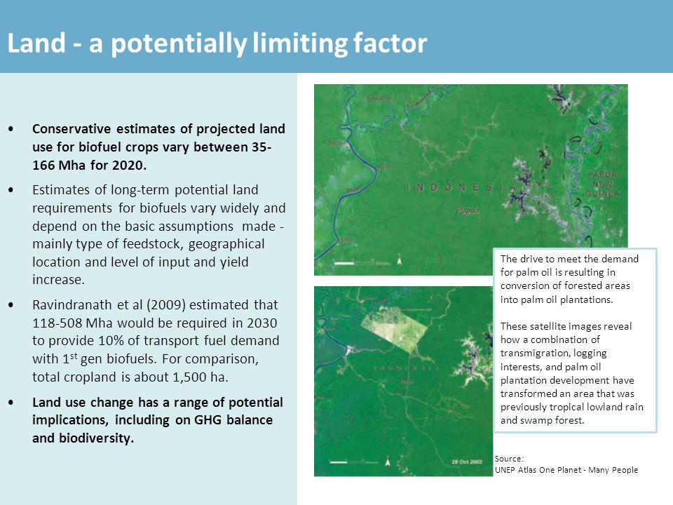 Land - a potentially limiting factor