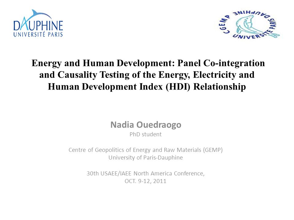 Energy and Human Development: Panel Co-integration and Causality Testing of the Energy, Electricity and Human Development Index (HDI) Relationship