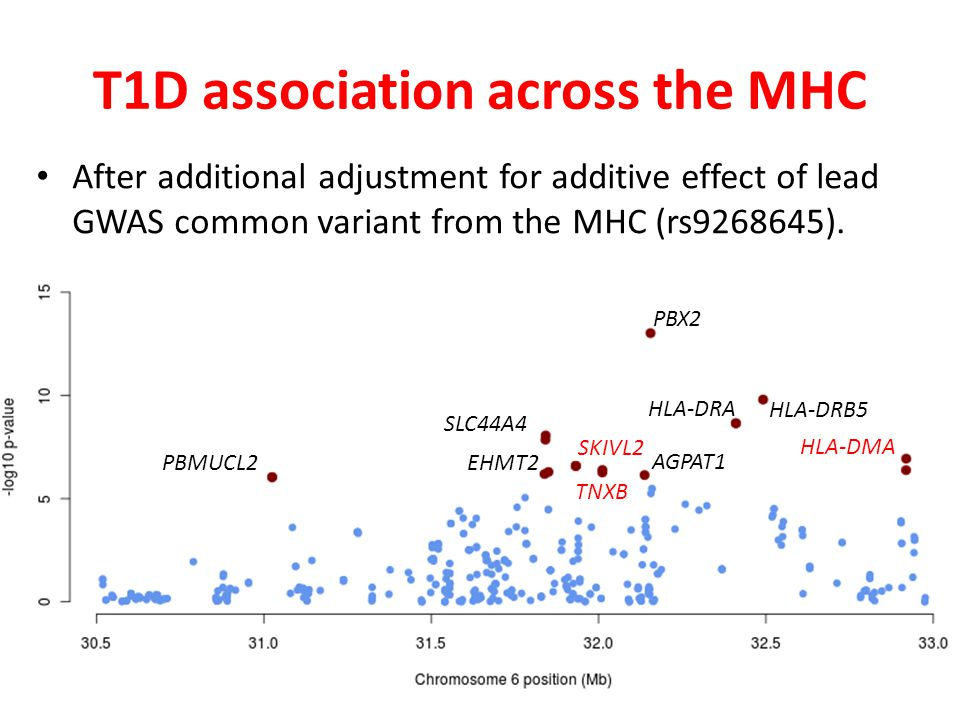 T1D association across the MHC