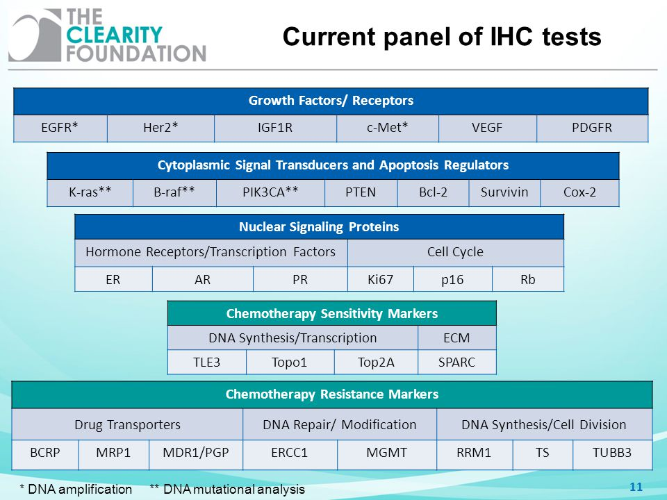 Current panel of IHC tests