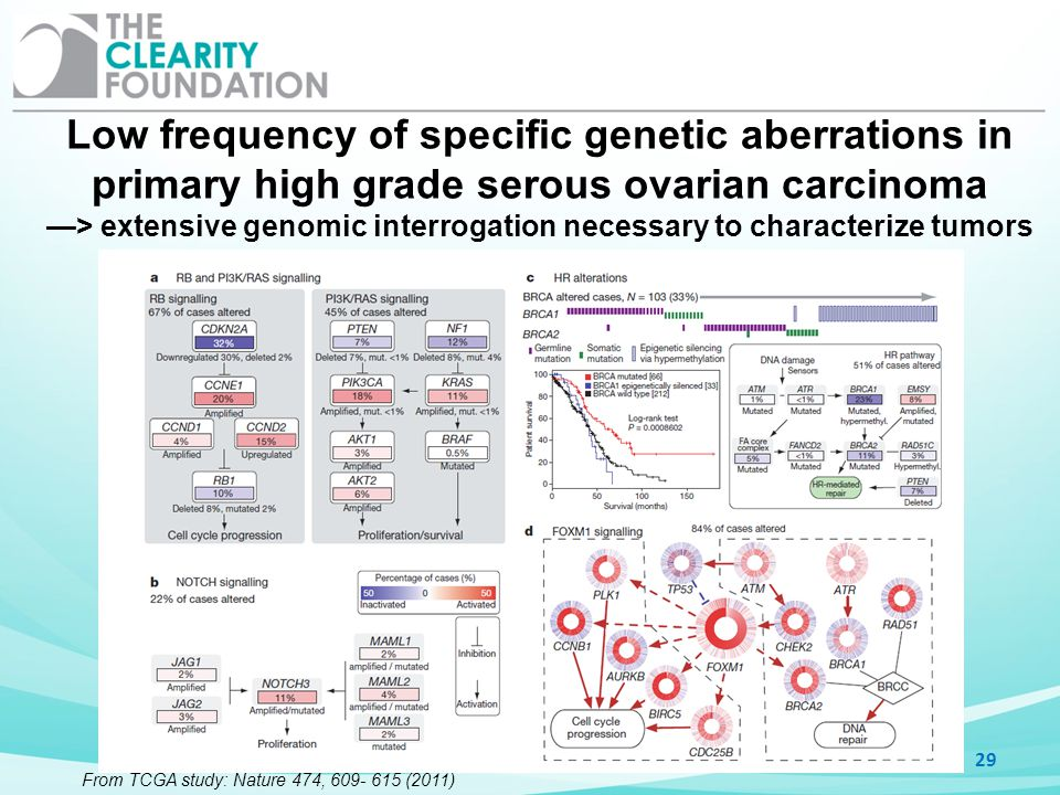 —> extensive genomic interrogation necessary to characterize tumors