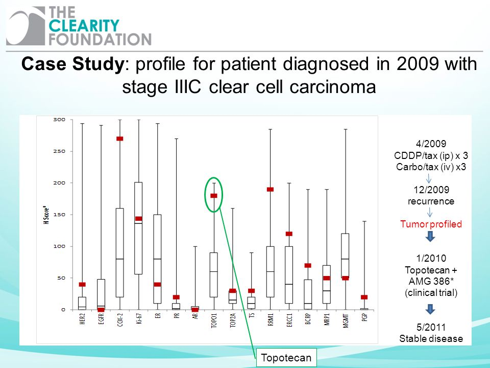 Case Study: profile for patient diagnosed in 2009 with stage IIIC clear cell carcinoma