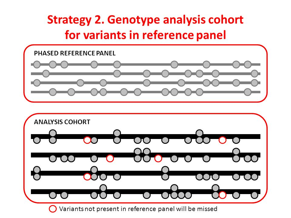 Strategy 2. Genotype analysis cohort for variants in reference panel