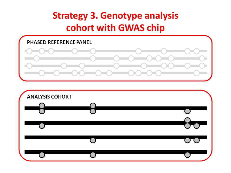 Strategy 3. Genotype analysis cohort with GWAS chip