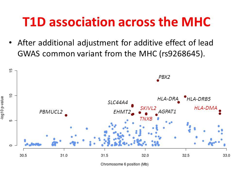 T1D association across the MHC