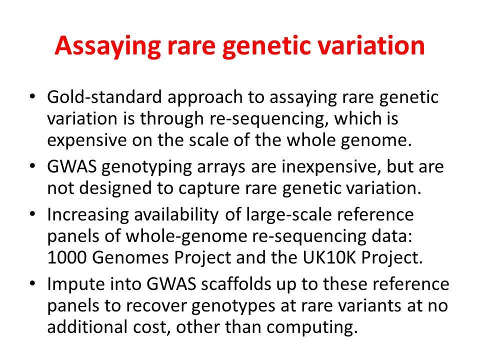 Assaying rare genetic variation