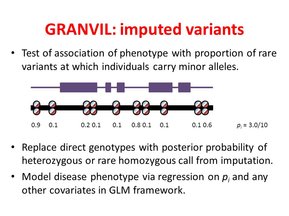 GRANVIL: imputed variants