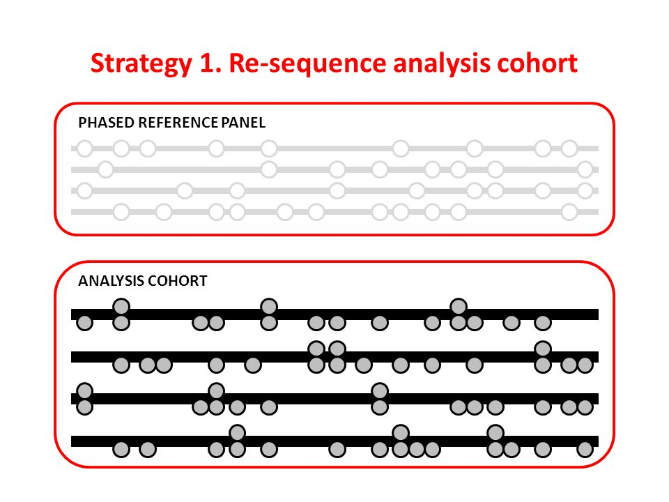 Strategy 1. Re-sequence analysis cohort
