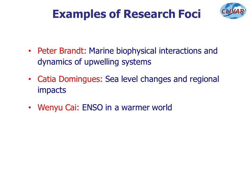 Examples of Research Foci