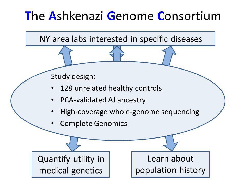 The Ashkenazi Genome Consortium