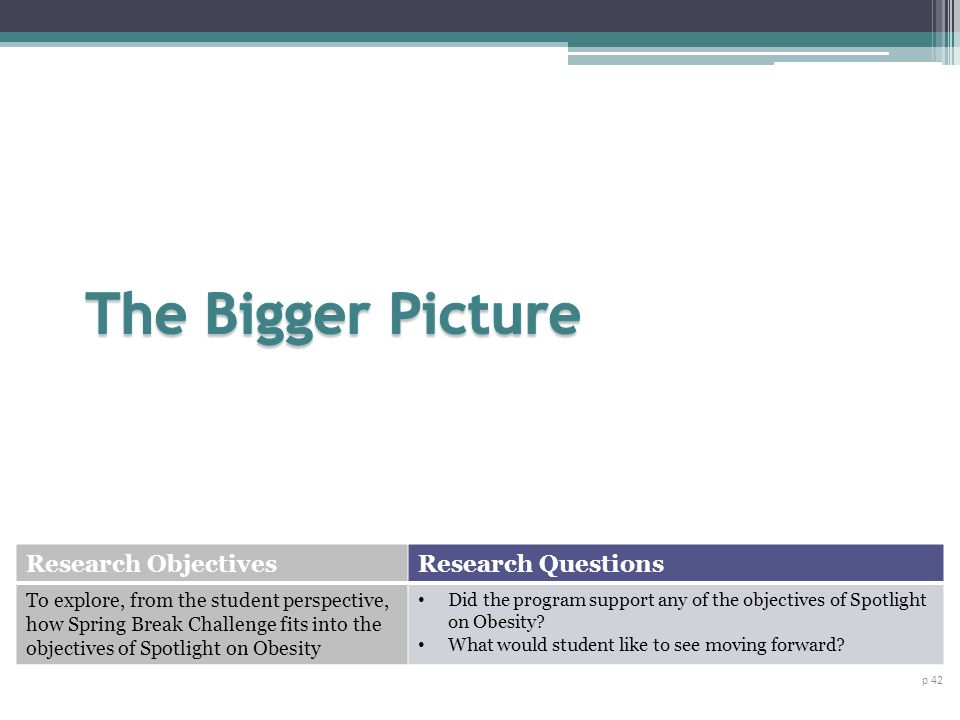 The Bigger Picture Research Objectives Research Questions