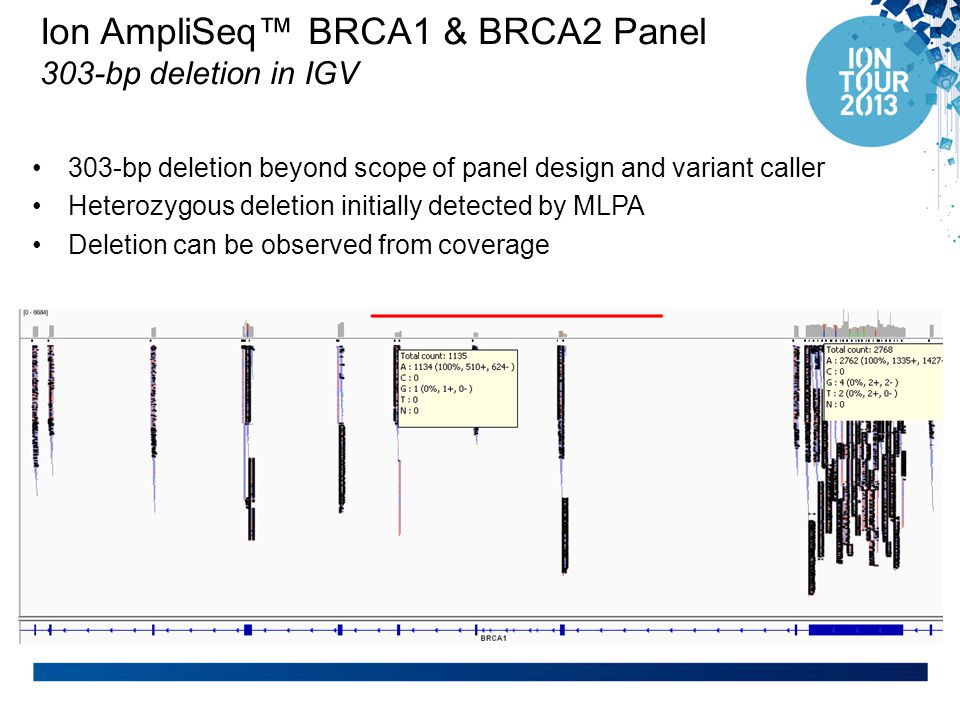 Ion AmpliSeq™ BRCA1 & BRCA2 Panel 303-bp deletion in IGV