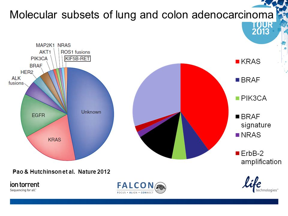 Molecular subsets of lung and colon adenocarcinoma