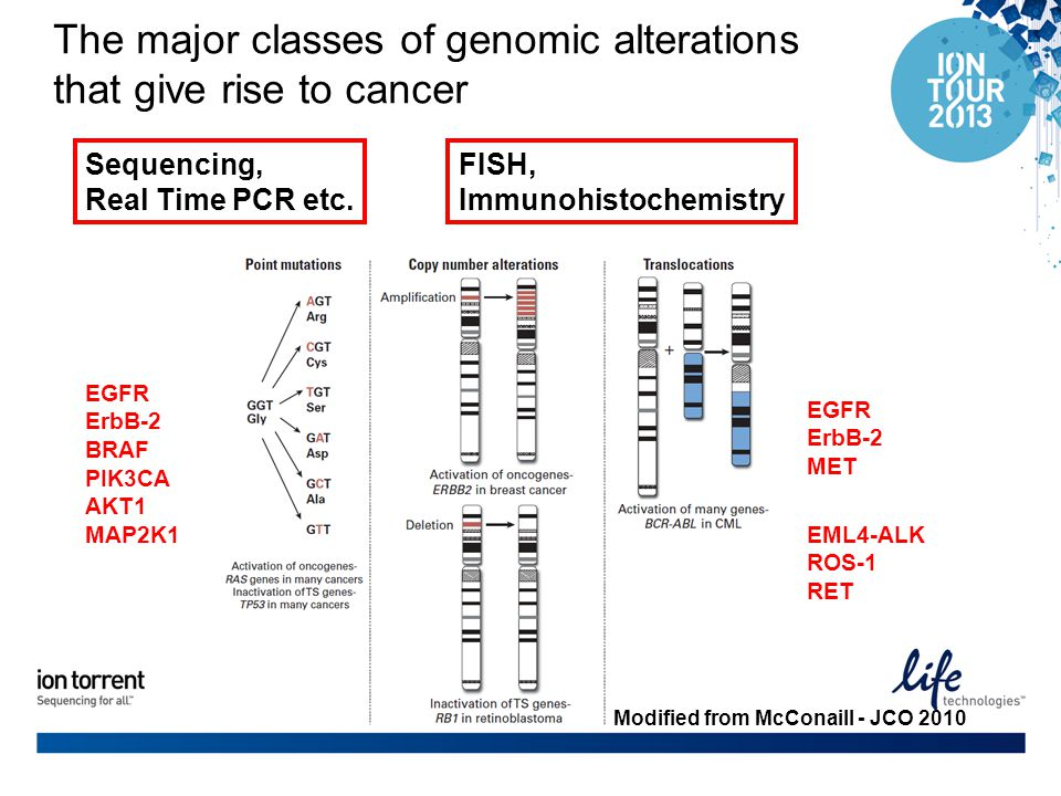 The major classes of genomic alterations that give rise to cancer