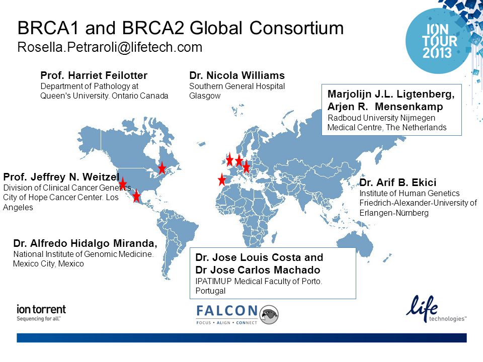 BRCA1 and BRCA2 Global Consortium Rosella.Petraroli@lifetech.com