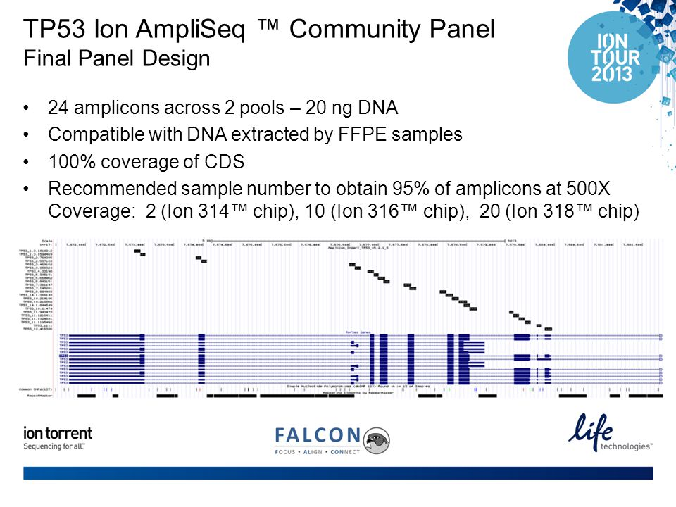 TP53 Ion AmpliSeq ™ Community Panel Final Panel Design
