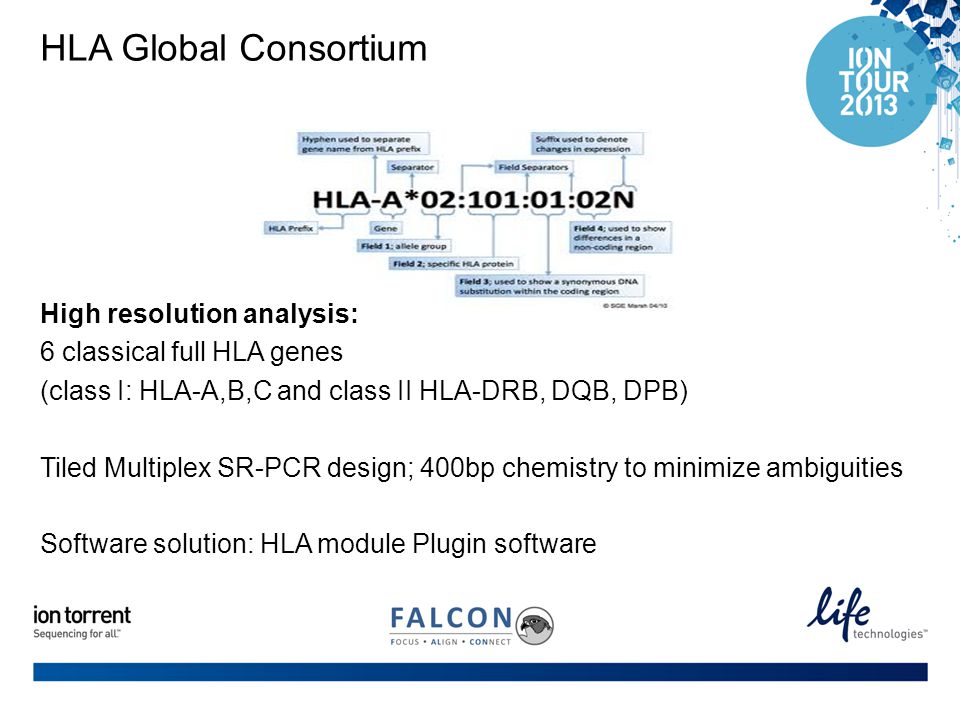 HLA Global Consortium