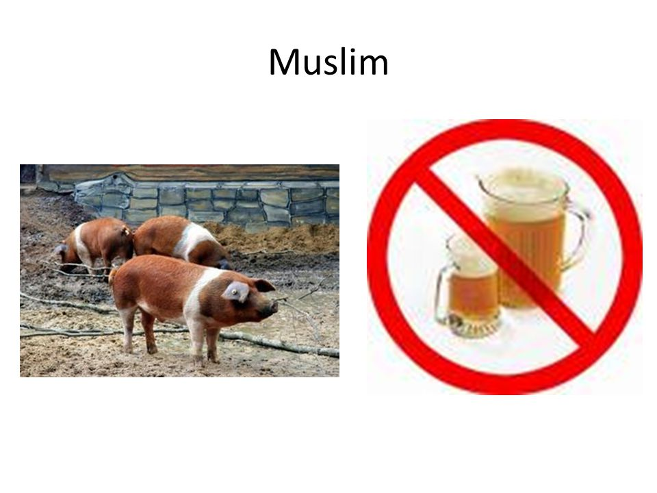 Muslim Cannot Drink Alcohol