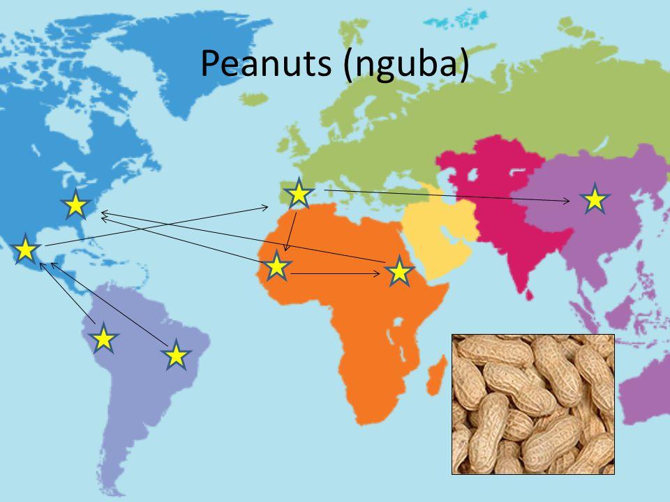 Peanuts (nguba) Originated in South America,