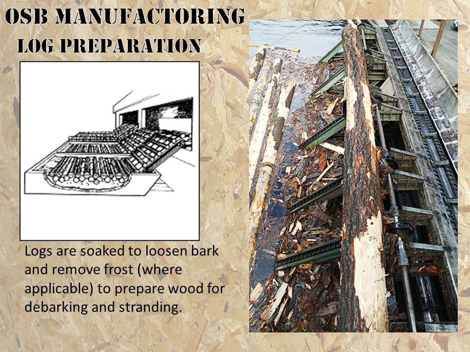 OSB MANUFACTORING Log preparation