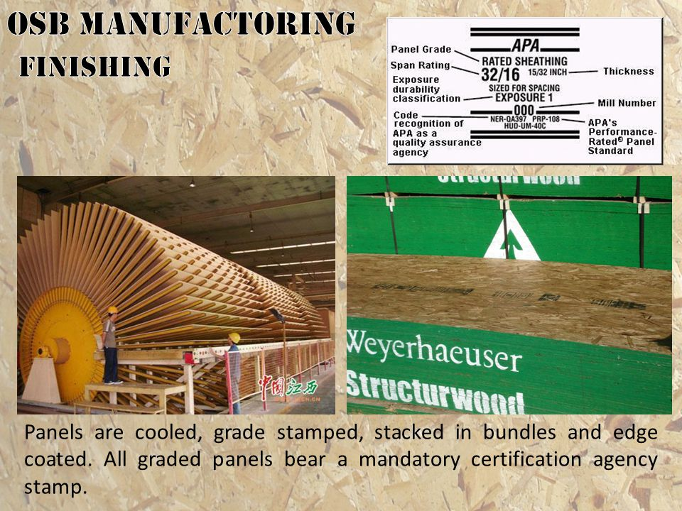 OSB MANUFACTORING finishing