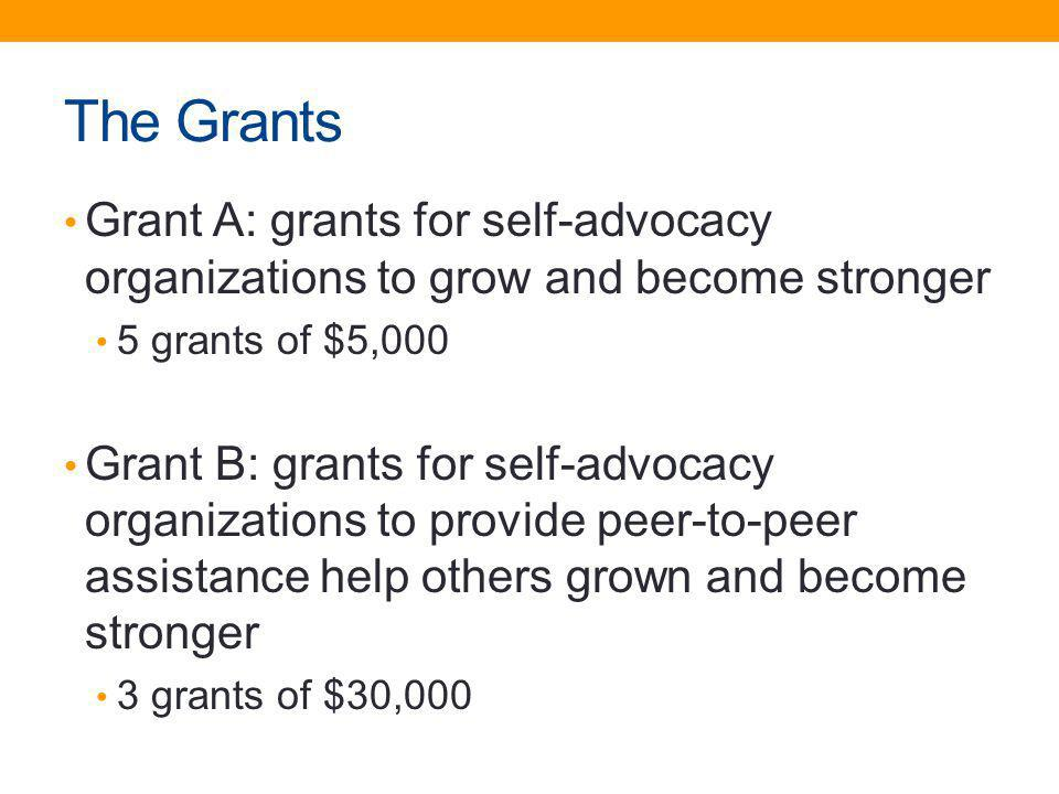 The Grants Grant A: grants for self-advocacy organizations to grow and become stronger. 5 grants of $5,000.