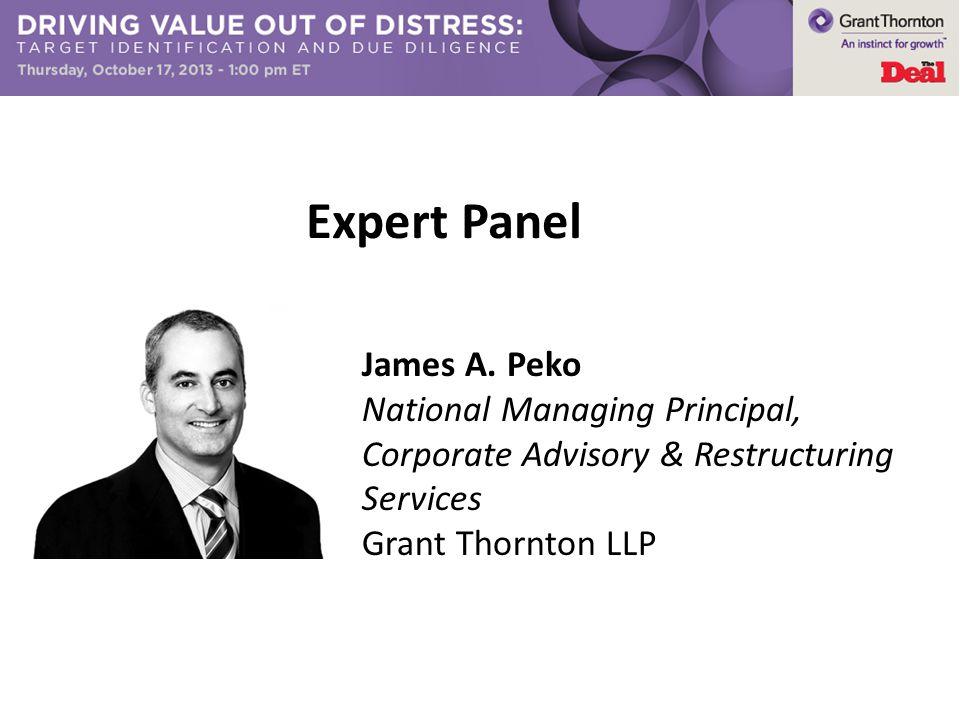 Expert Panel James A. Peko