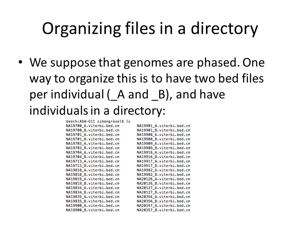 Organizing files in a directory