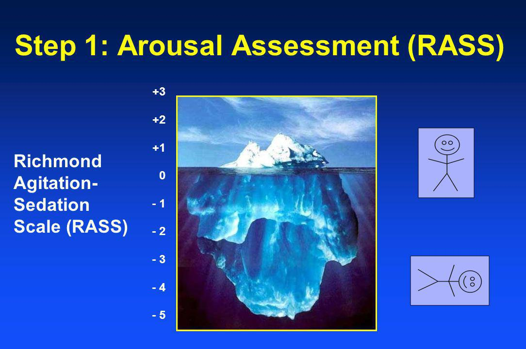 Step 1: Arousal Assessment (RASS)