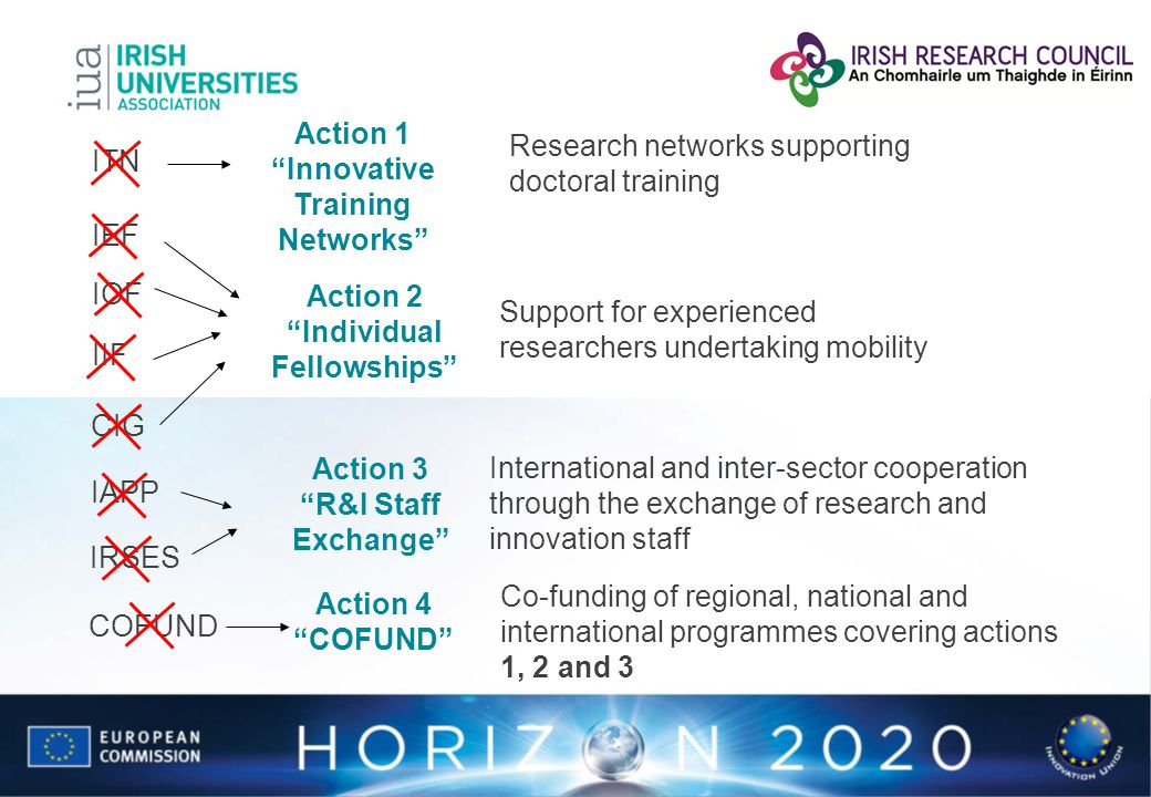 Research networks supporting doctoral training