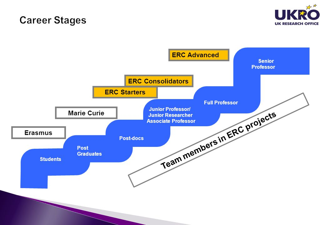 Team members in ERC projects