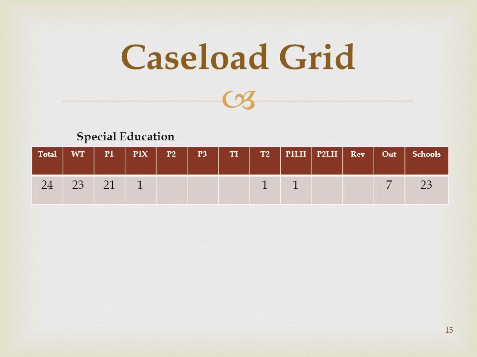 Caseload Grid Special Education 24 23 21 1 7 Total WT P1 P1X P2 P3 TI