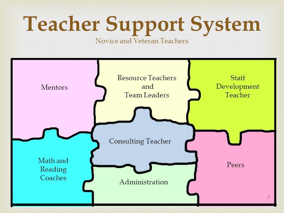 Teacher Support System Novice and Veteran Teachers