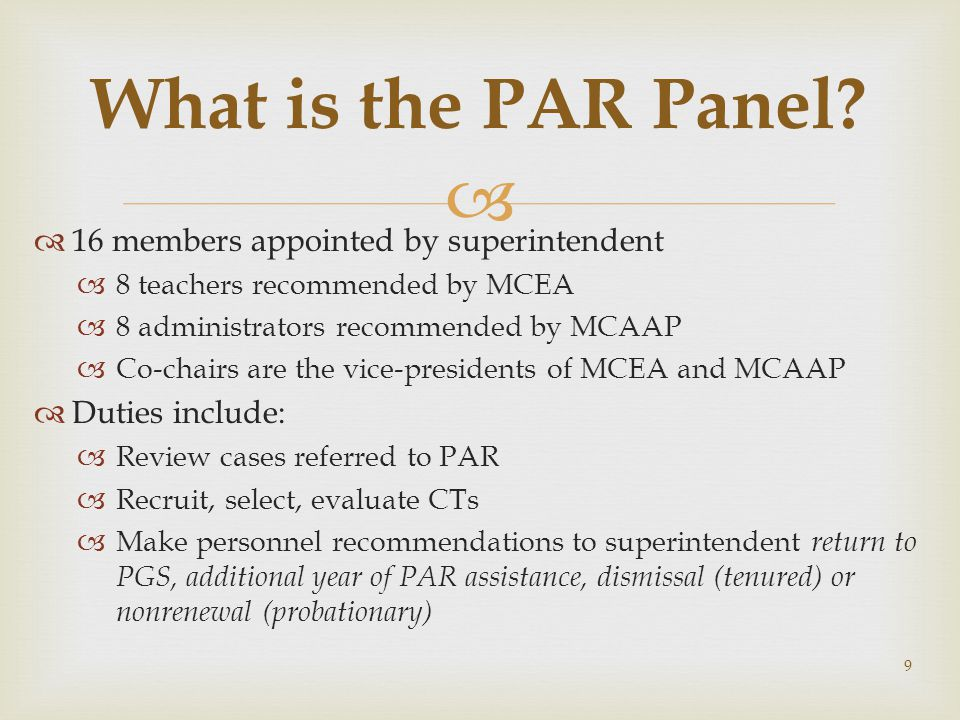 What is the PAR Panel 16 members appointed by superintendent