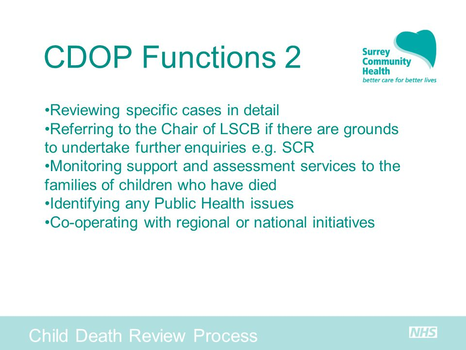CDOP Functions 2 Child Death Review Process