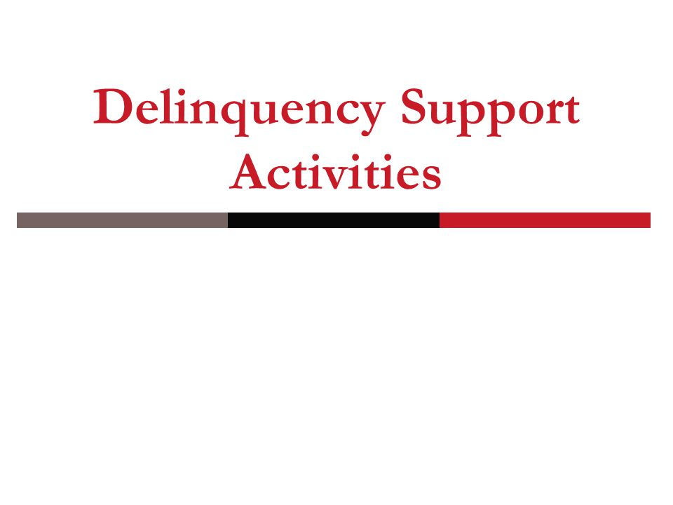 Delinquency Support Activities